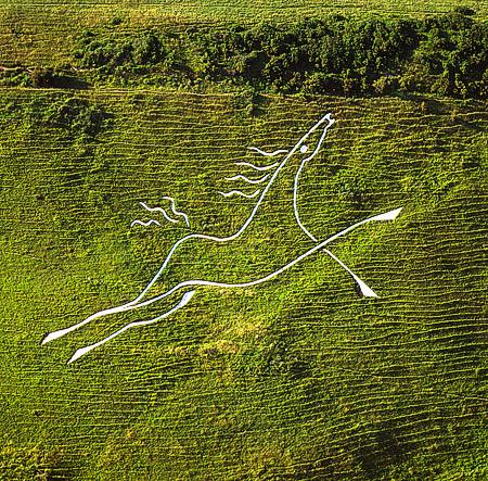 folkestone white horse hill figure