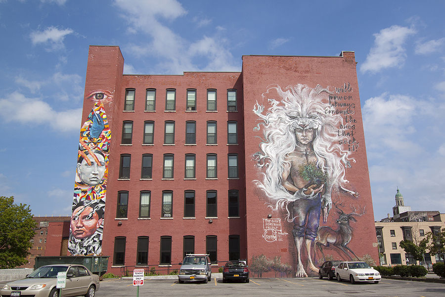 gaia ever wall therapy street art mural graffiti rochester ny