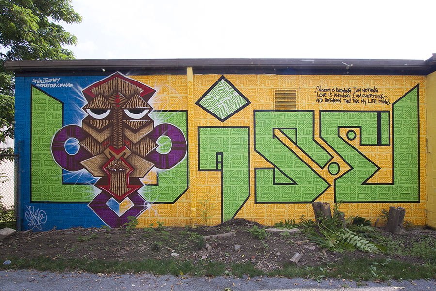 wise2 wall therapy rochester ny mural art